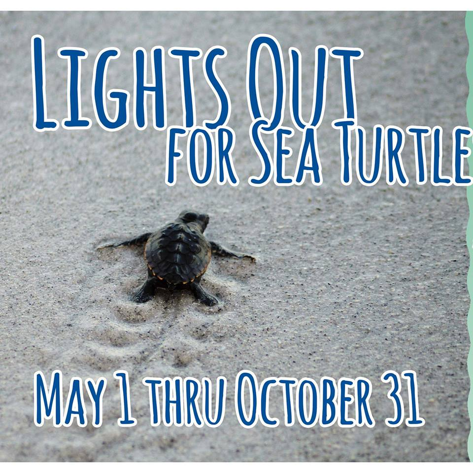 lights out for sea turtles May 1- October 31