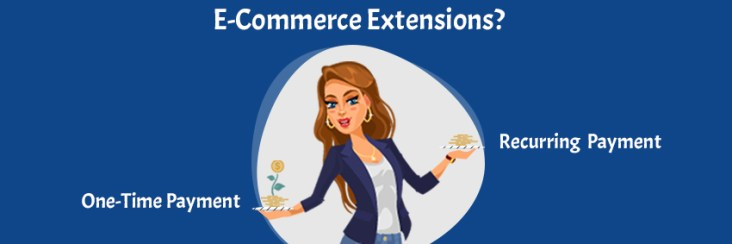 What Pays? One-Time Payment Vs Recurring Payments for E-Com Extensions