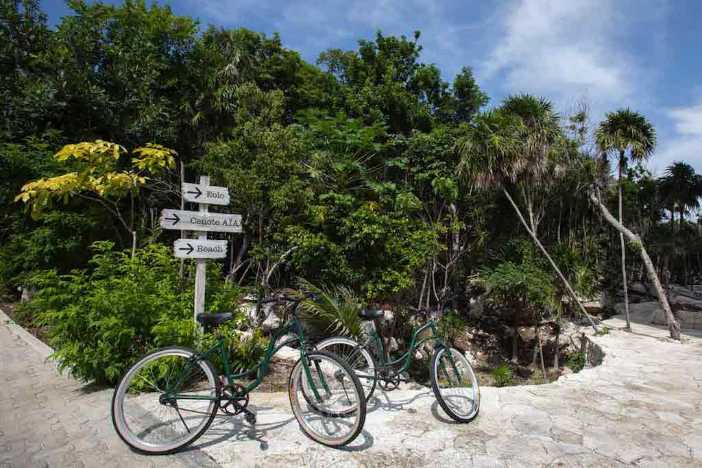 Bike-Webpage