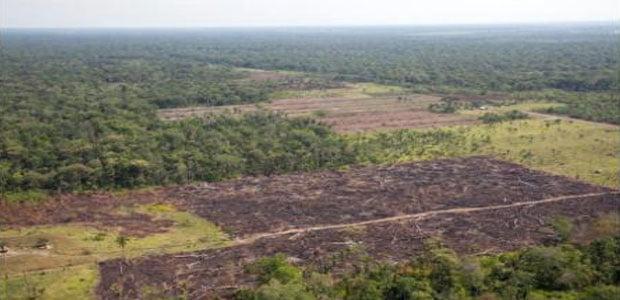 Mineros, soyeros y colonos se pelean Reserva Guarayos (Erbol, 5.8.14)