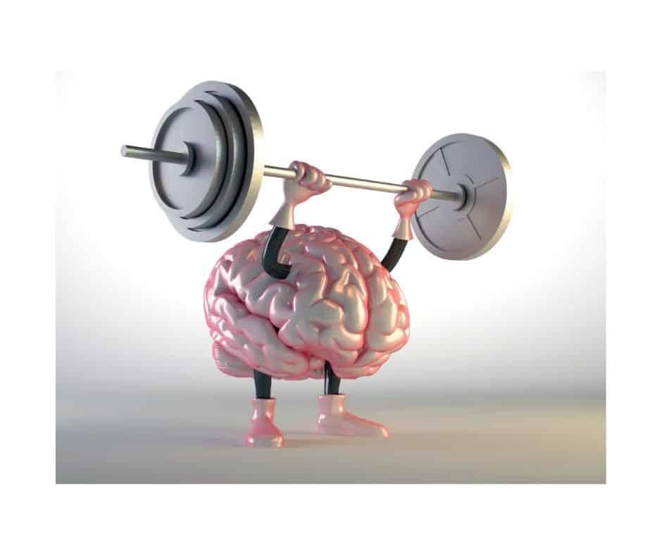 Cerveau qui se muscle