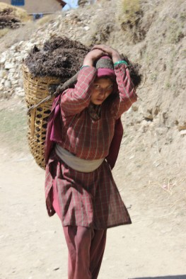 Woman carrying manure for her field