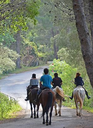 escursioni-cavallo-madonie2