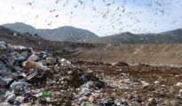 ecomafia rifiuti