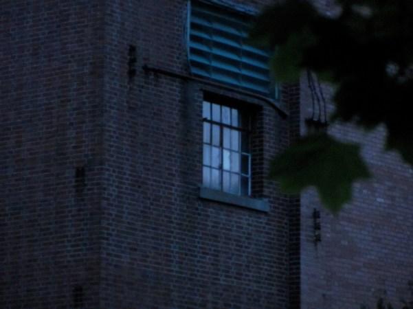 Side Window