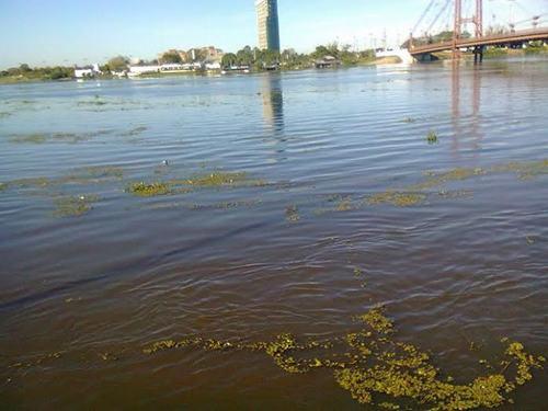 inundacion-parana