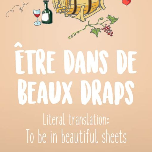 Popular French idioms
