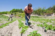 pequeños agricultores