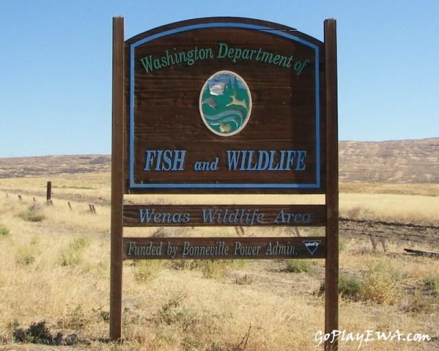 Photos: Wenas Wildlife Area Exploring Run 1