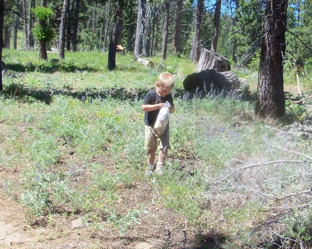 Photos: 2010 Ahtanum ORV Trails Clean-up 5