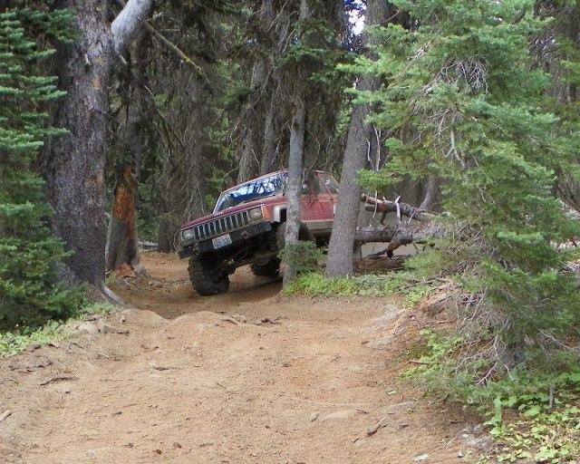 Photos: Trail 4W613 Work Day 48