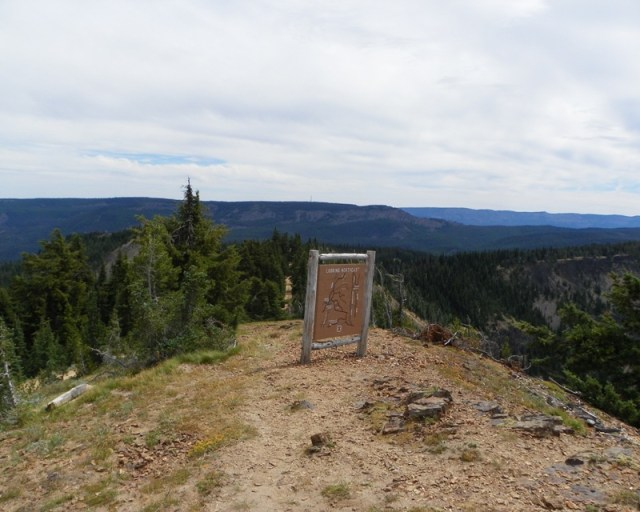 Photos: Yellow Jeep Run - Bethel Ridge 3