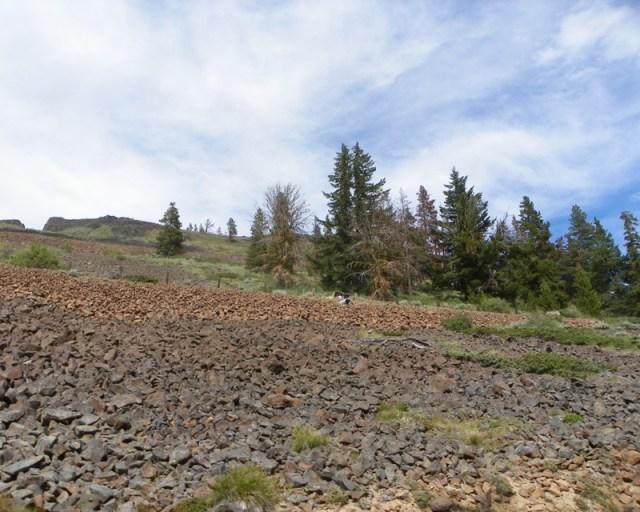 Photos: Yellow Jeep Run - Bethel Ridge 15