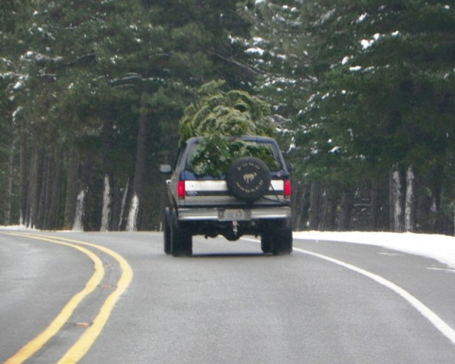 Photos: EWOR Christmas Tree Backroads Run at Rimrock 13