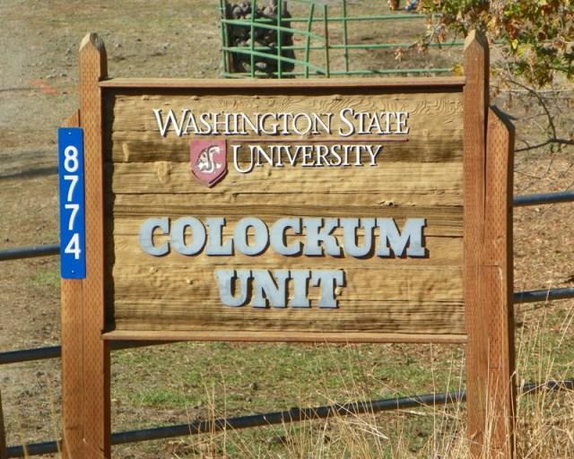 Photos: Pacific Northwest Backroad Adventures North Colockum Tour 27