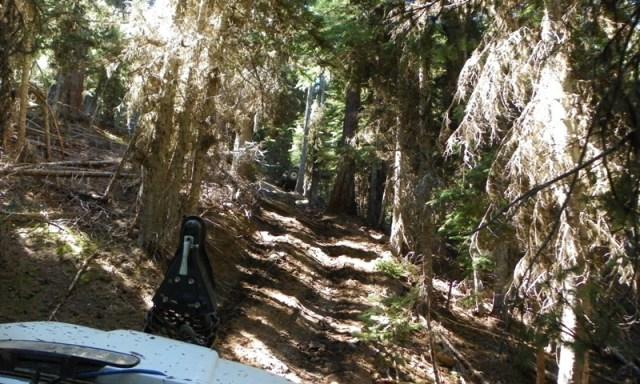 Pacific Northwest 4 Wheel Drive Association's 2011 Trail Jamboree – Day 2 of 5 29