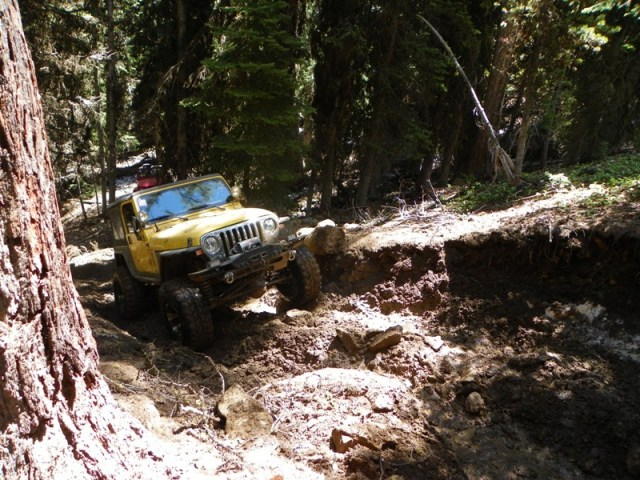 Pacific Northwest 4 Wheel Drive Association's 2011 Trail Jamboree – Day 2 of 5 67