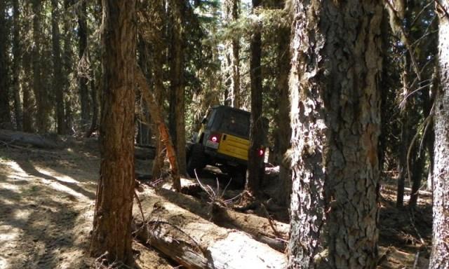 Pacific Northwest 4 Wheel Drive Association's 2011 Trail Jamboree – Day 2 of 5 115