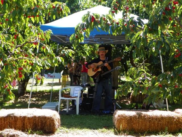 Cherry Festival at Barrett Orchards 9