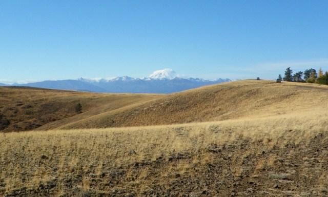 Cleman Mountain Halloween Backroads Run – Oct 29 2011 43