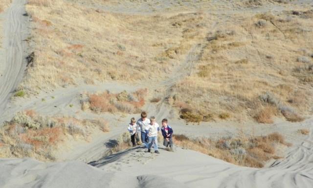 Juniper Dunes ORV Run 66