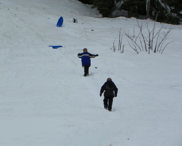 Sledding/Snow Wheeling Run at the Ahtanum State Forest 31