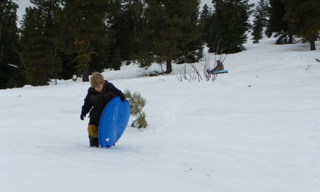 Sledding/Snow Wheeling Run at the Ahtanum State Forest 33