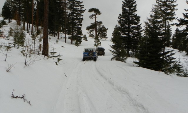 Sledding/Snow Wheeling Run at the Ahtanum State Forest 43