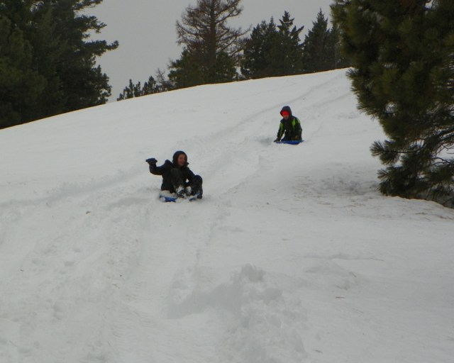 Sledding/Snow Wheeling Run at the Ahtanum State Forest 81