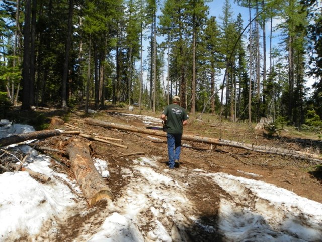 Memorial Day 4×4 Snow Run at the Ahtanum State Forest 4