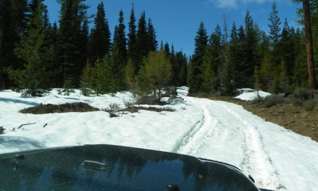 Memorial Day 4×4 Snow Run at the Ahtanum State Forest 13