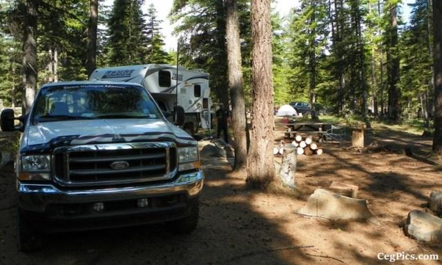 Tree Phones Camping Trip 10