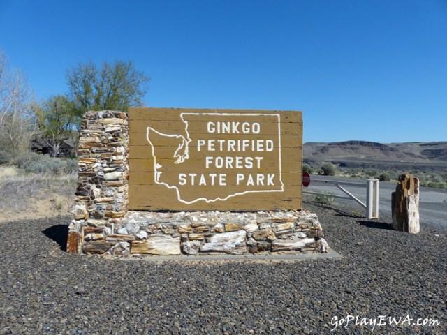 Ginkgo Petrified Forest