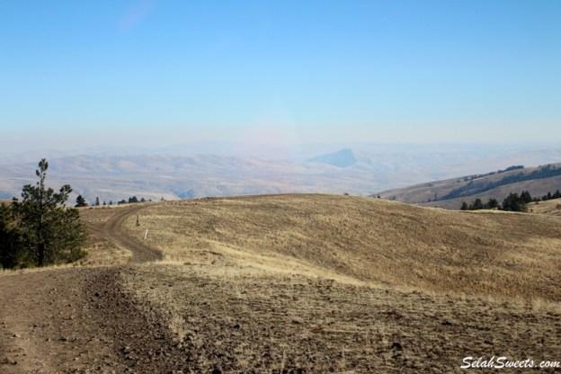 Cleman Mountain 4x4 Run