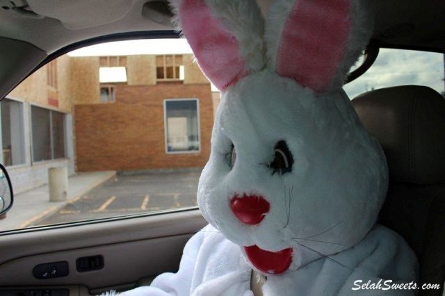 Easter_Bunny_15