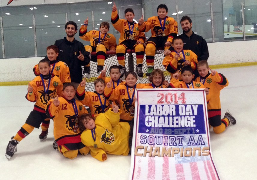Golden Wolves Squirt AA 2014 2015 games results     05  final  4 3 period 1 period 2 period 3 Overtime Shoot Out period 1  period 2 period 3 10 11 2014 Golden Wolves Squirt AA vs Scorpions White  Peewee A