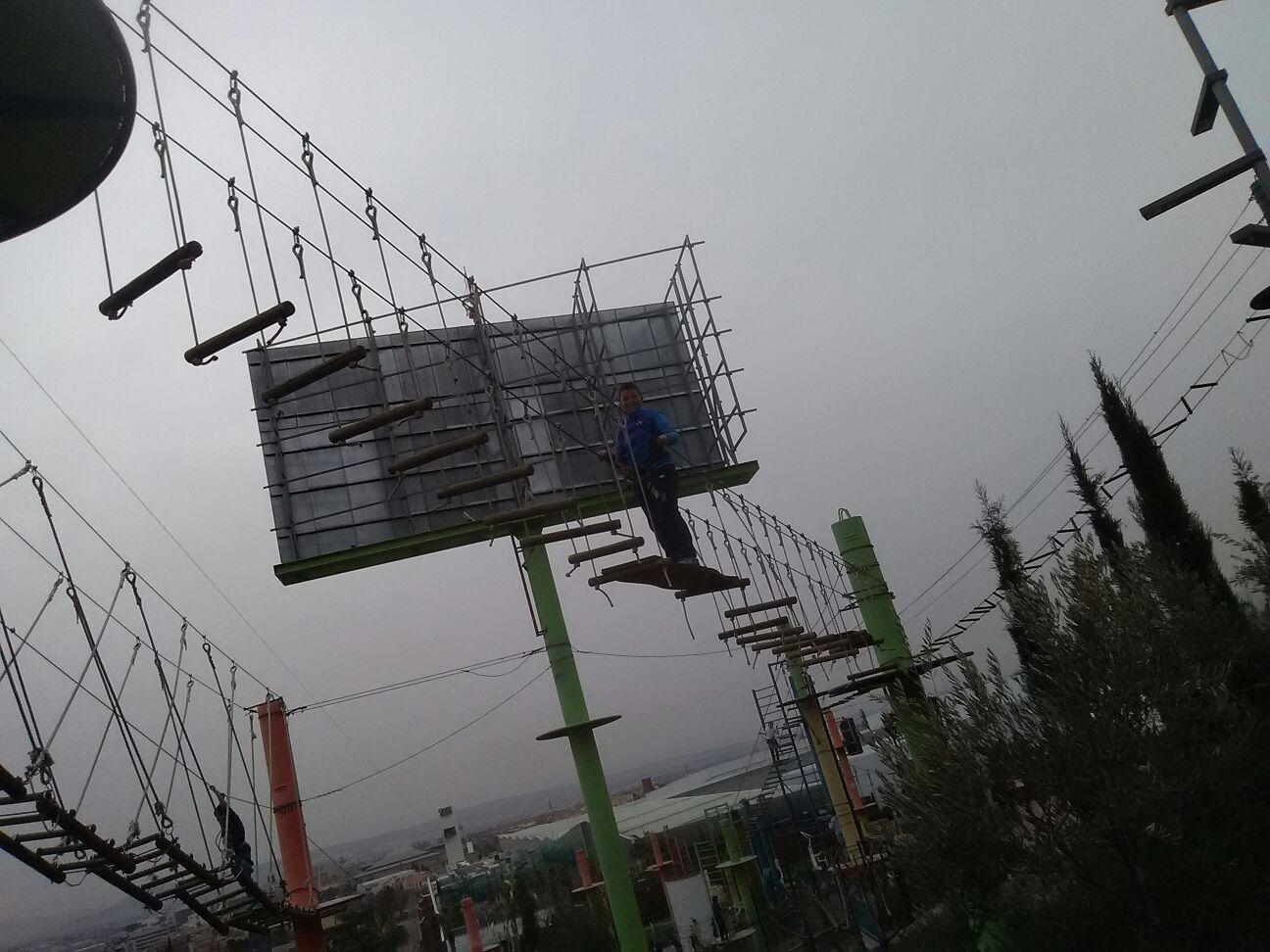 bosquesuspendido_18 (15)