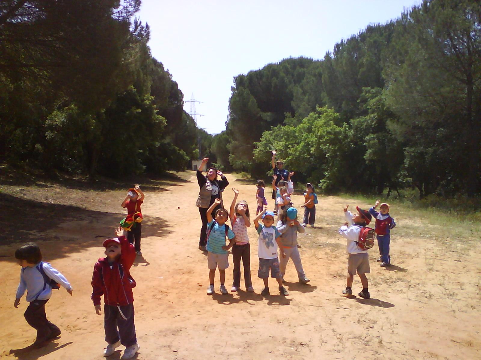 Visita al Pinar del Rey Infantil
