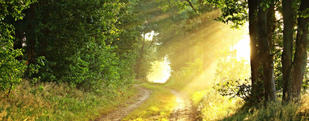 Walking with God in nature