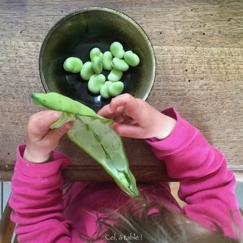 jeune enfant écossant des fèves