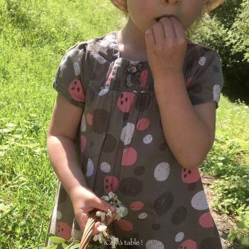 oser goûter des fleurs d'acacia