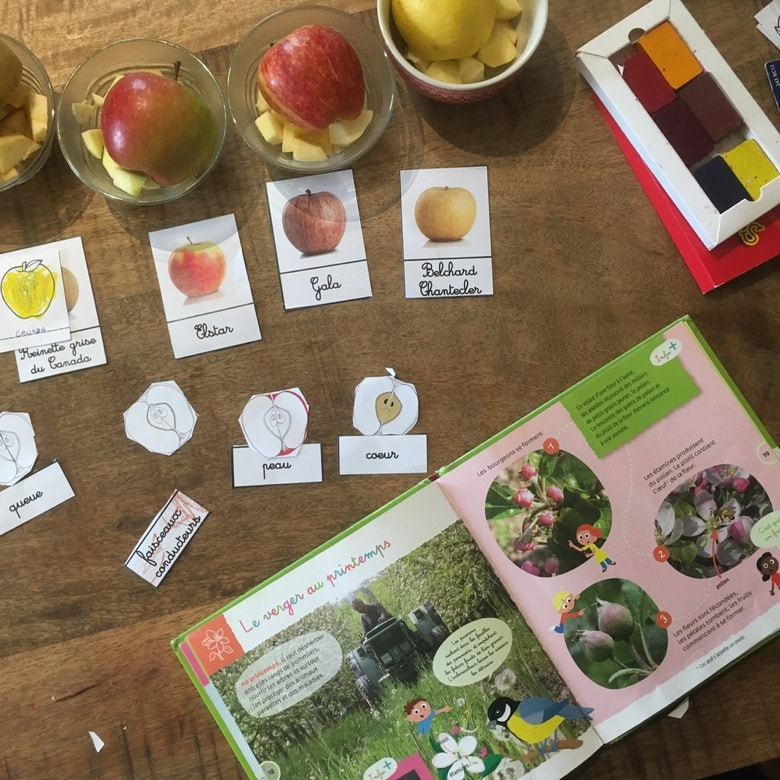 atelier dégustation pommes