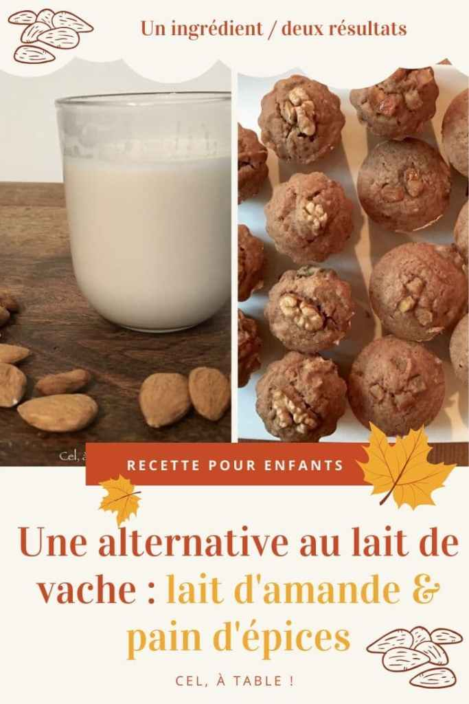 Une alternative au lait de vache : lait d'amande et pain d'épices