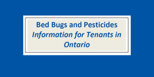 Bed Bugs and Pesticides – Information for Tenants in Ontario