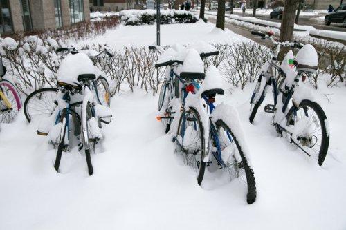 Bikes20in20Snow-500x333