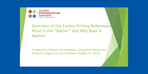 "Overview of the Carbon Pricing References: What is the ""Matter"""