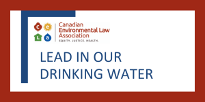Lead in our Drinking Water