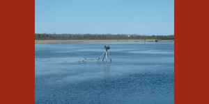 Letter to the Premier in Support of Ontario's Conservation Authorities