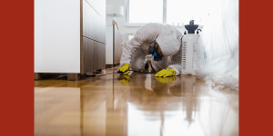 Pesticides Indoors – Differences in Risks, Regulation, and Necessary Precautions