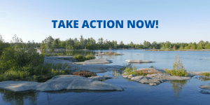 Action Alert – A Green and Just Recovery Depends on Your Voice
